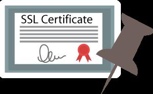 SSL Unpinning (bypass) Yöntemleri